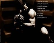 Motivation (13)